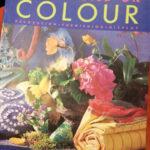 Tricia Guild On Colour - £10